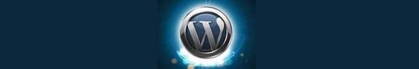 Здесь логотип WordPress