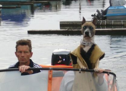 Собака - капитан